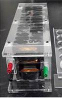 Petri dishes inside EMF transmitter