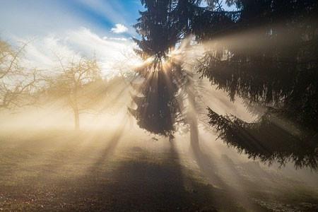 singlight rays