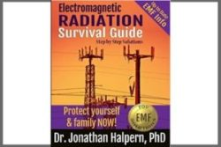 Electromagnetic Radiation Survival Guide