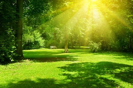 Sunlight's UVA and UVB cause photodamage.