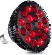 wolezek 36w 660 850 bulb e1613971559514